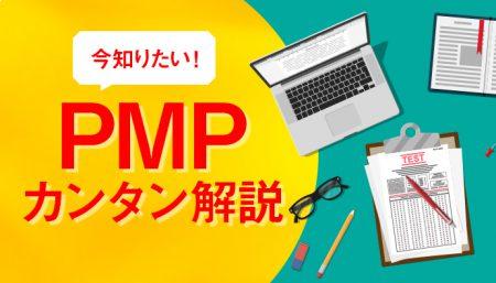 【簡単理解】今知りたい!PMPとは何か?